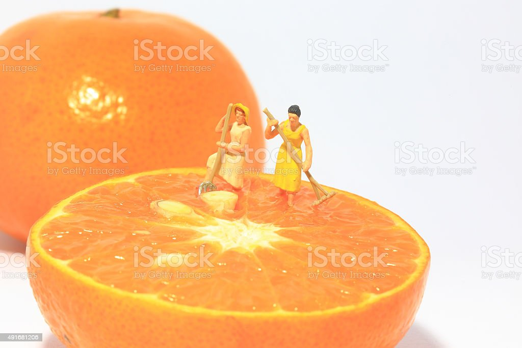 Two women(miniature) working on orange. stock photo