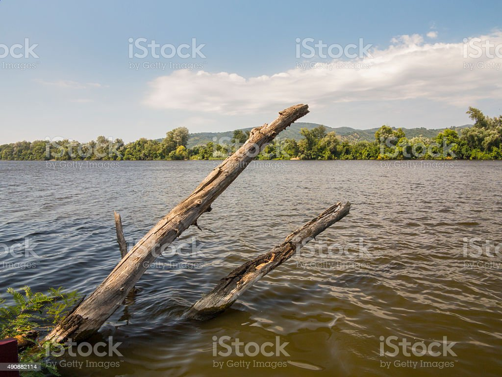 Two wooden logs sticking out of water stock photo