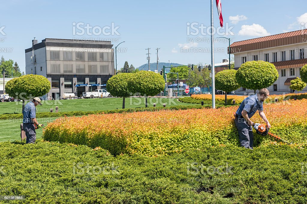 Two workers gardening and mowing shrubs stock photo