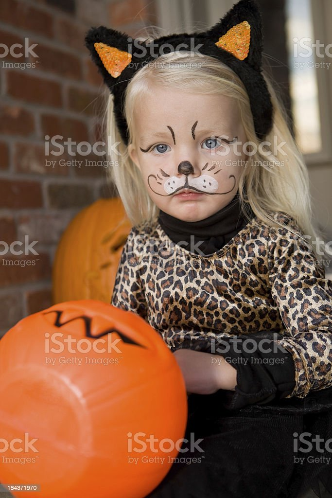 Two Year Old Girl in Cat Costume for Halloween stock photo