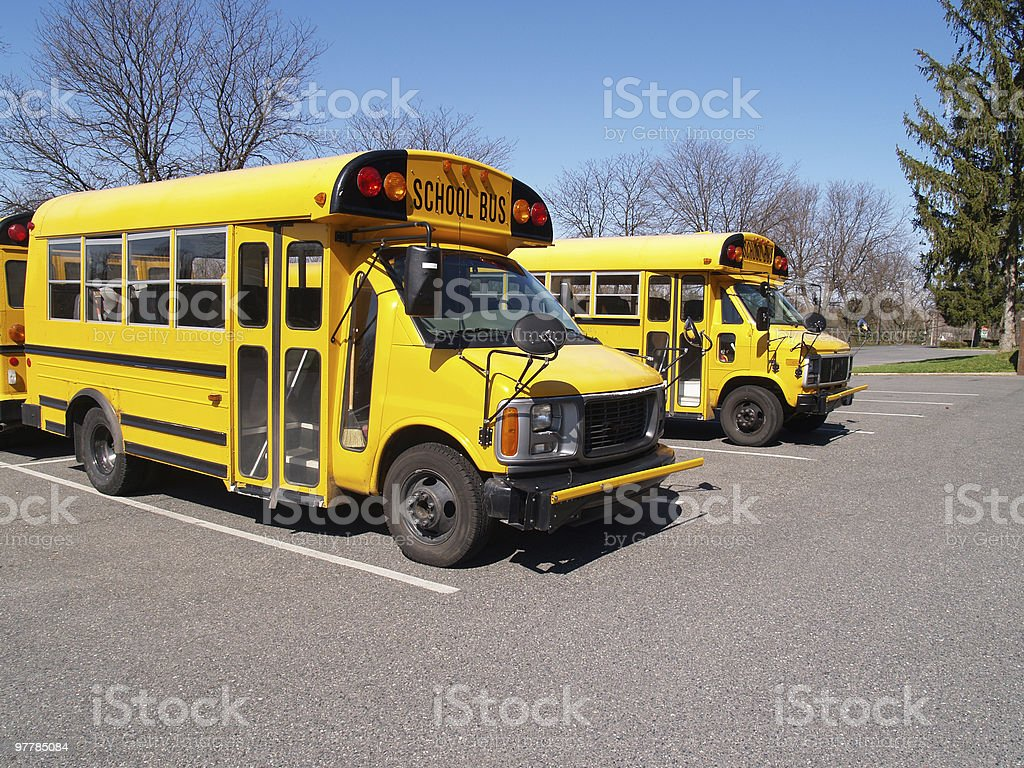 two yellow school buses royalty-free stock photo