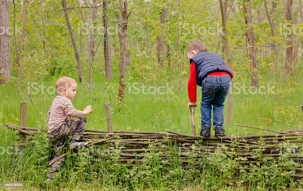 Two young boys playing on a rustic fence stock photo