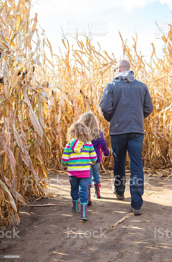 Two Young Girls & Dad Walking In Autumn Corn Maze stock photo