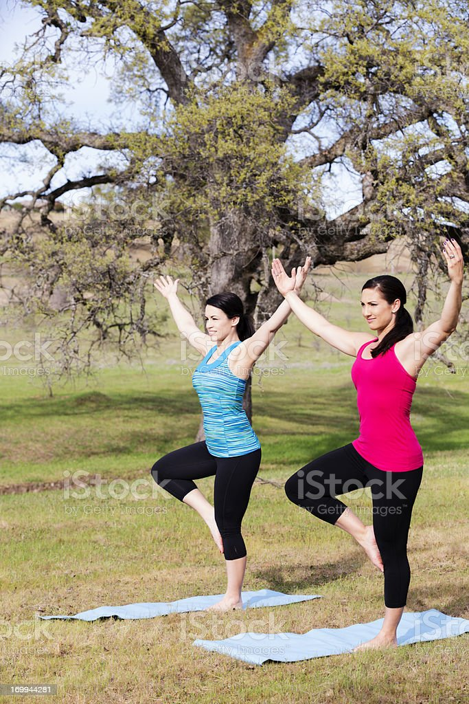 Two young women doing yoga in the park royalty-free stock photo