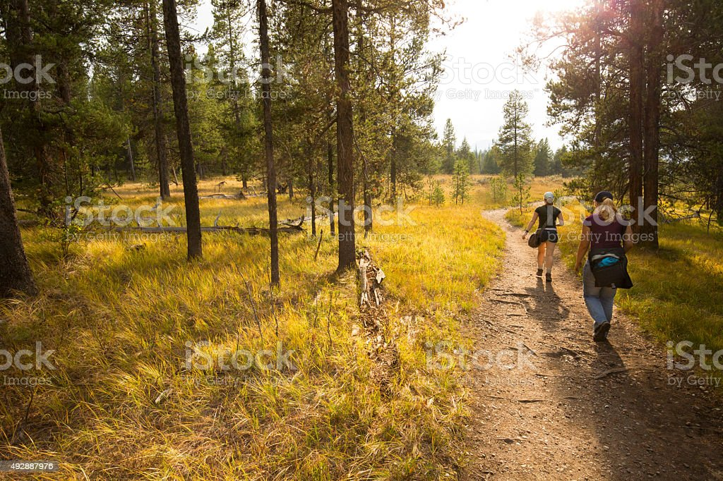 Two young women hiking a trail with golden grass, Wyoming. stock photo