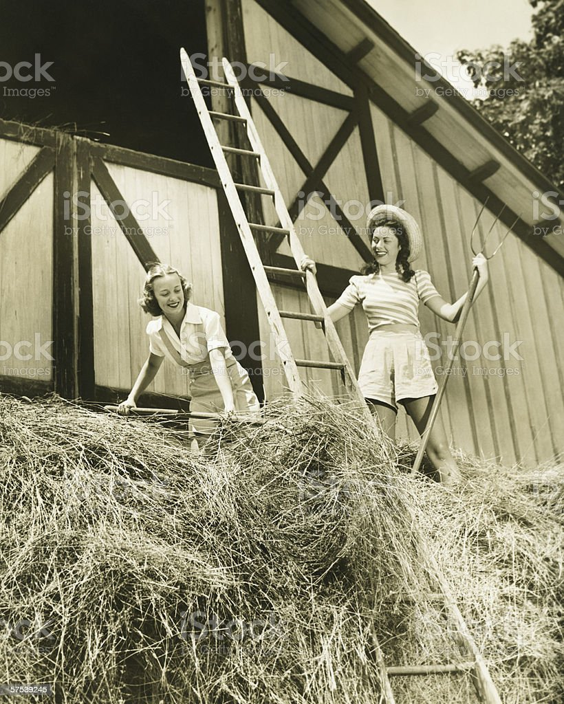 Two young women pitching hay, (B&W) stock photo