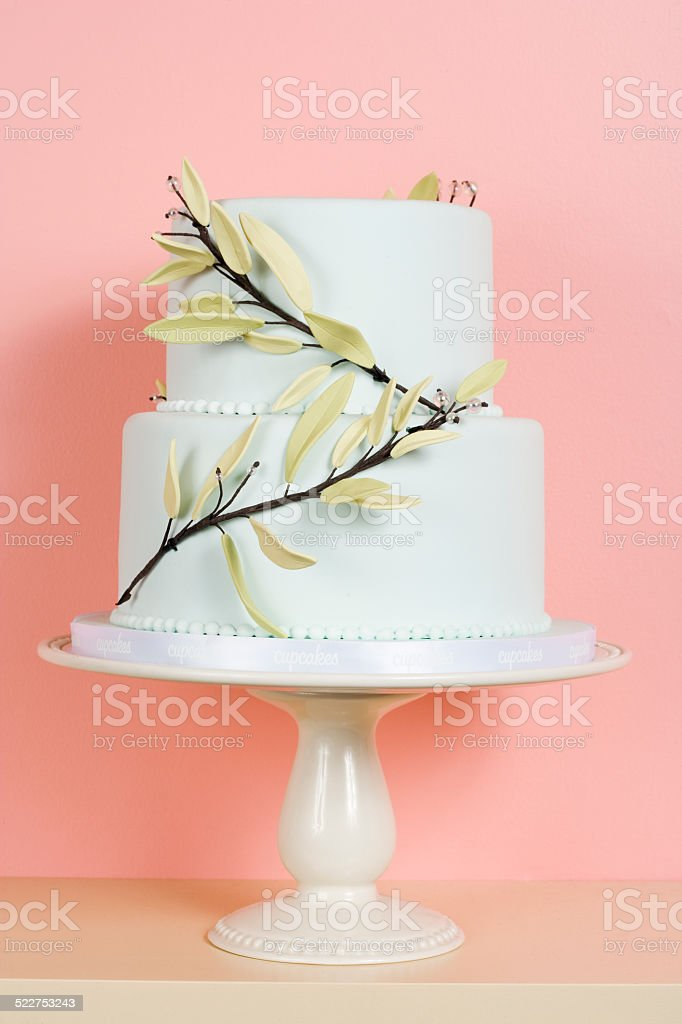 Two-Tiered White Cake stock photo