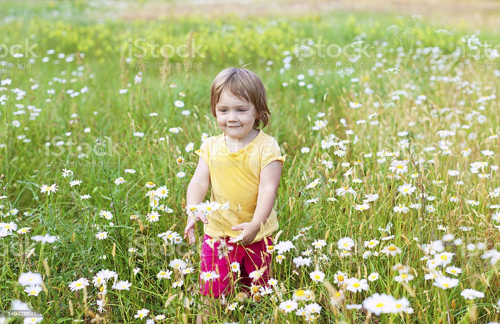 Two-year child in meadow royalty-free stock photo