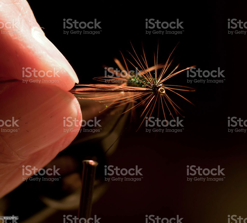 Tying a renegade fly. stock photo