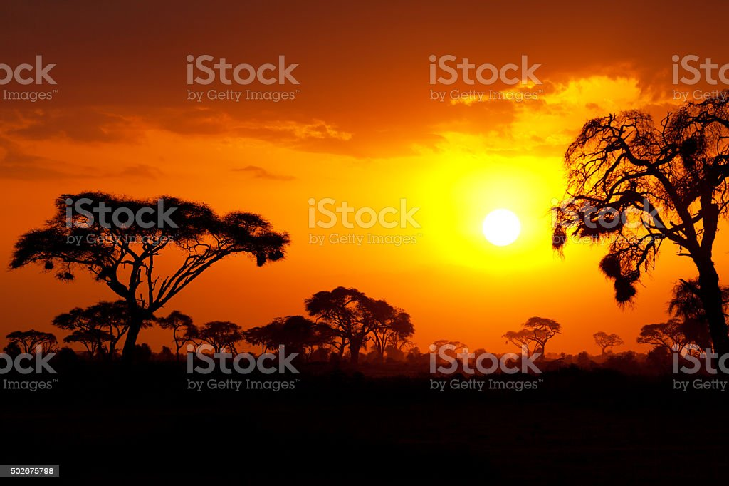 Typical african sunset stock photo