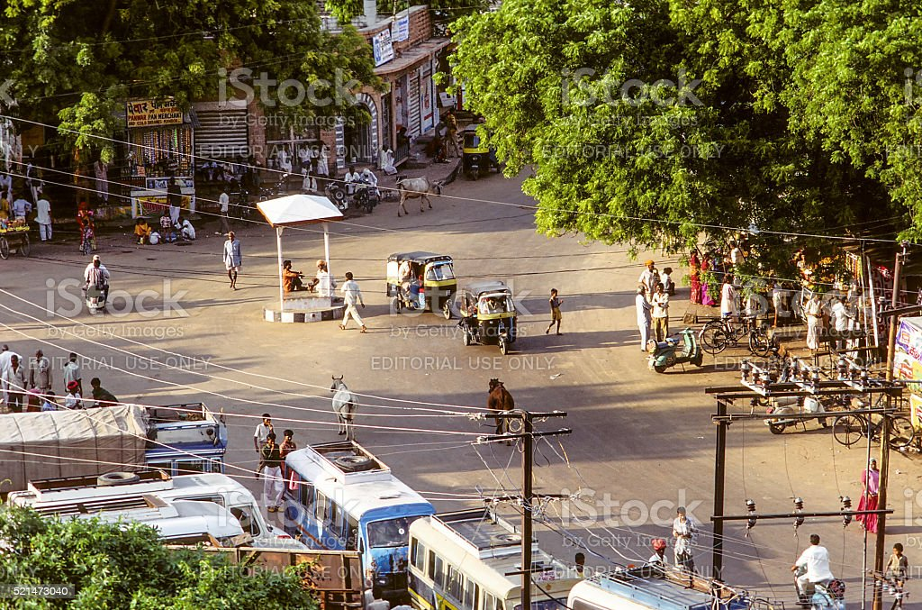 typical afternoon street life in Delhi with cows, tuktuks, peopl stock photo
