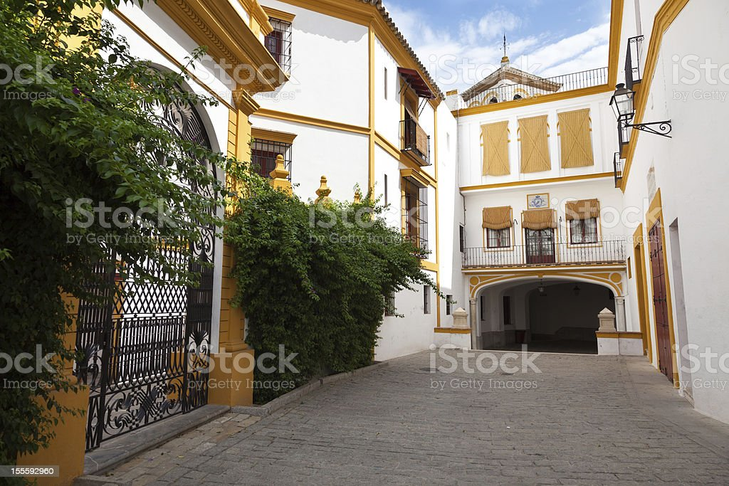 Typical alley from Sevilla, Spain stock photo