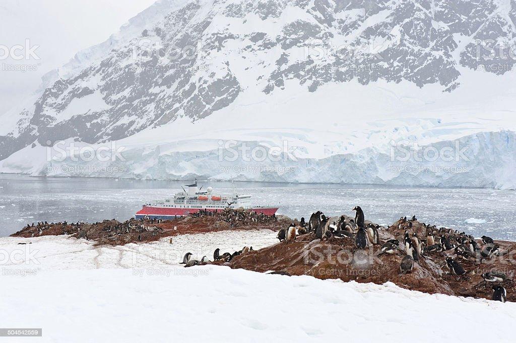 Typical Antarctic day stock photo