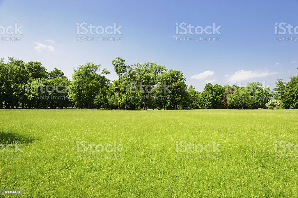 Typical Austrian Landscape stock photo