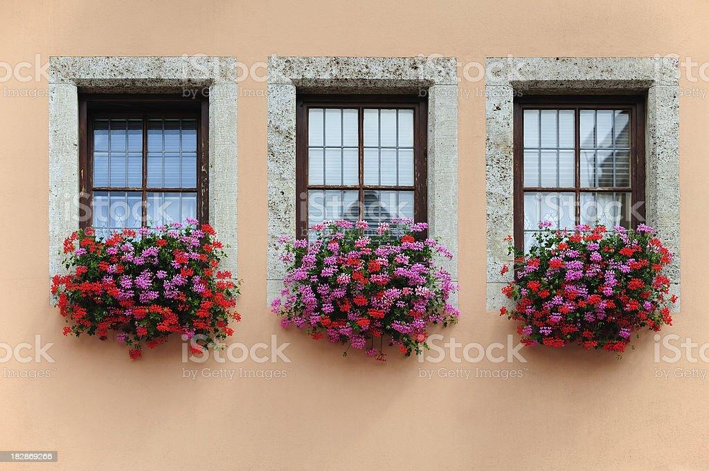Typical Austrian windows stock photo