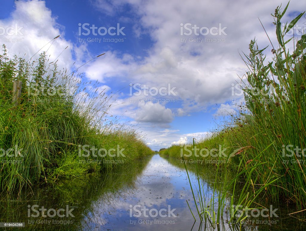Typical dutch ditch stock photo