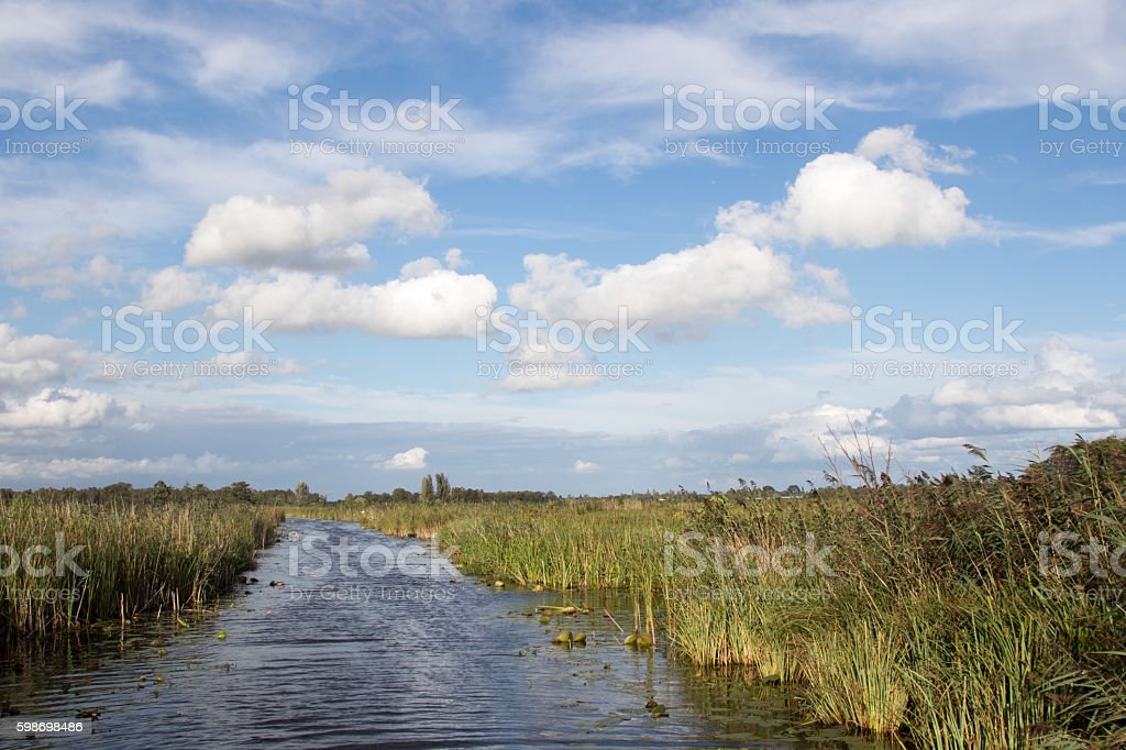 Typical Dutch green landscape with cloudy sky stock photo