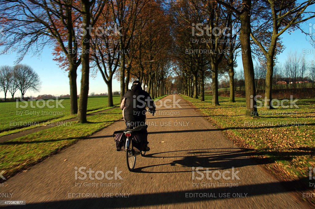 Typical Dutch landcscape stock photo
