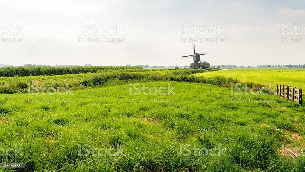Typical Dutch polder landscape in the summer season stock photo