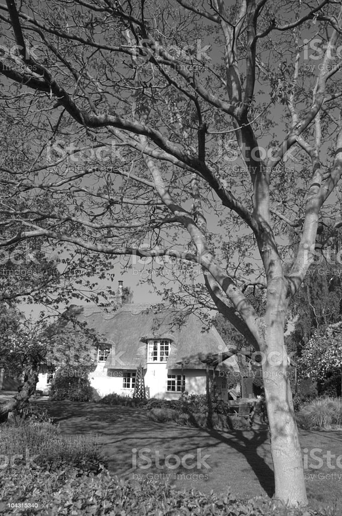 Typical english cottage stock photo