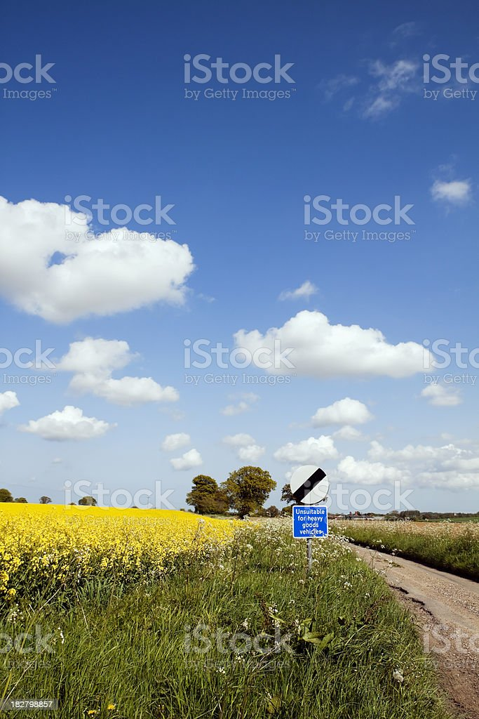 Typical English country lane royalty-free stock photo