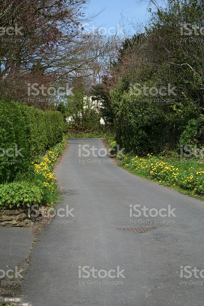 Typical English Country Lane. royalty-free stock photo