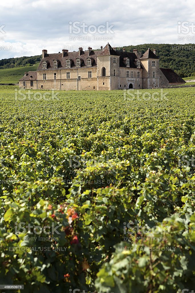 Typical French vineyard and chateau royalty-free stock photo