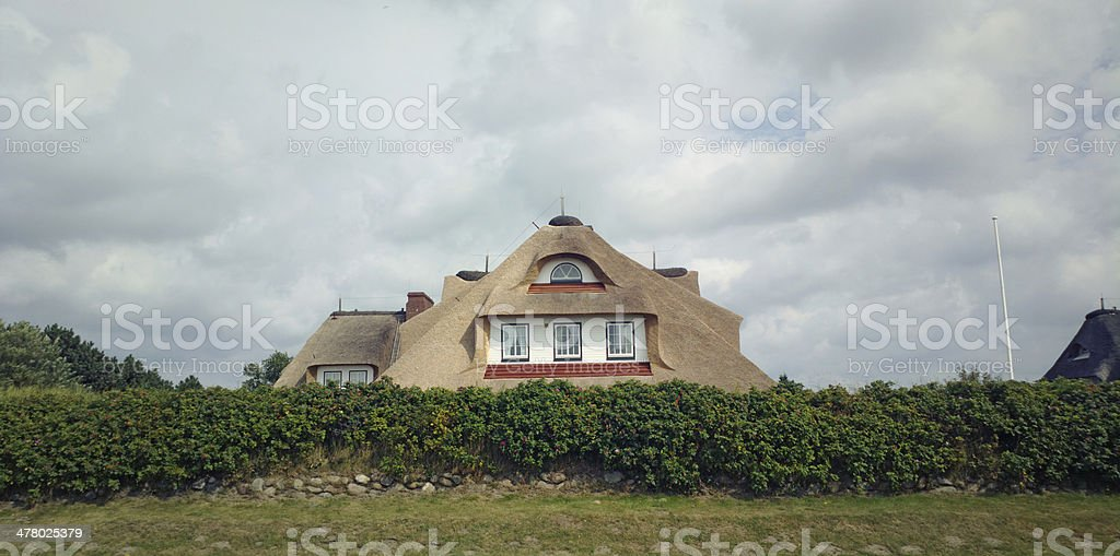 Typical frisian house with thatched roof stock photo