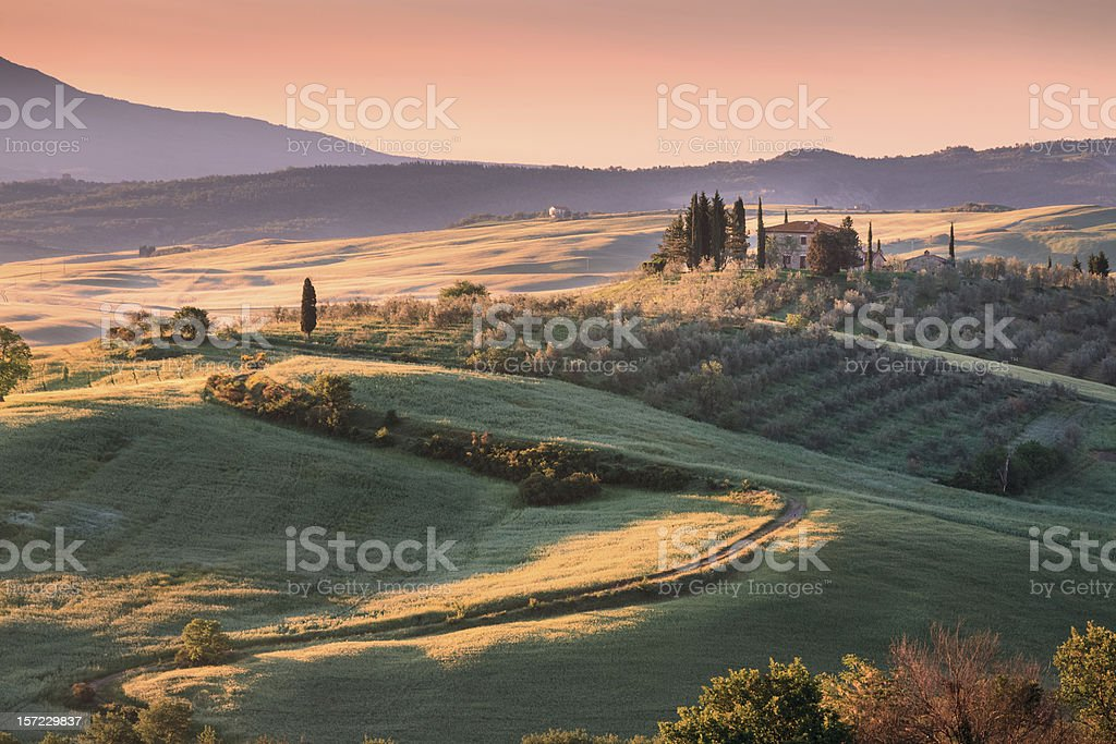 Typical landscape in the Tuscany royalty-free stock photo