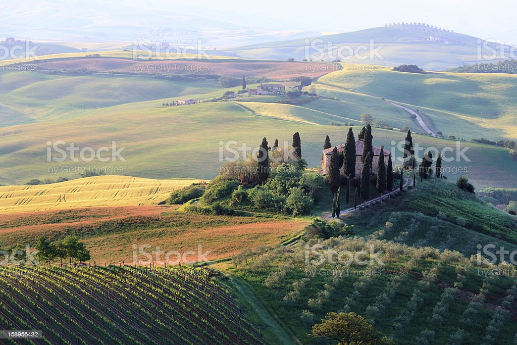 typical landscape in the Tuscany stock photo