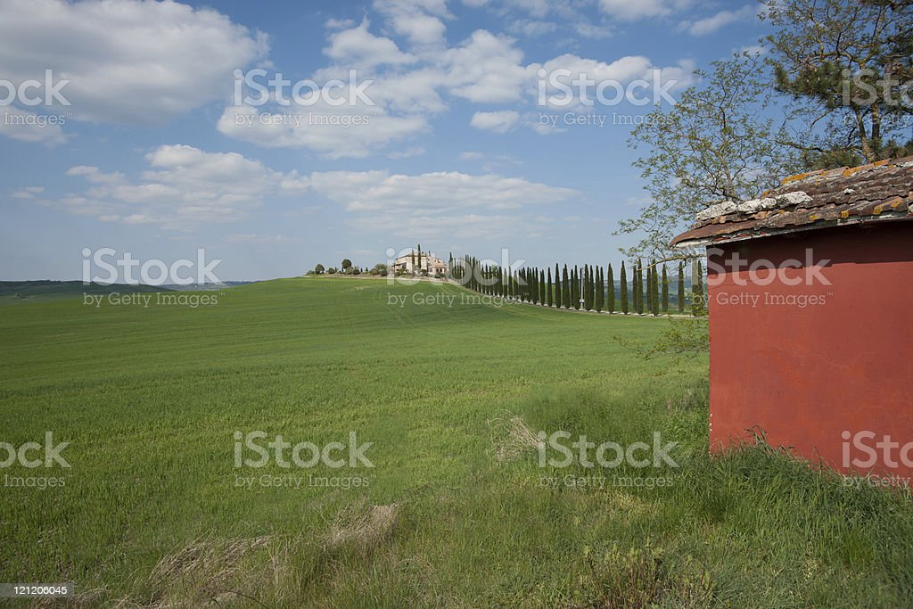 Typical landscape of Tuscany. Italy. stock photo