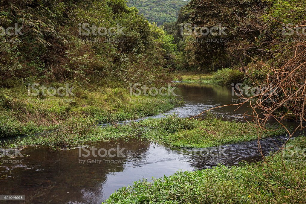 Typical Landscape with small river in Minas Gerais, Brazil stock photo