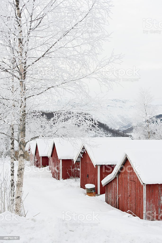 Typical Norwegian fishing lodges with birch trees in snow royalty-free stock photo