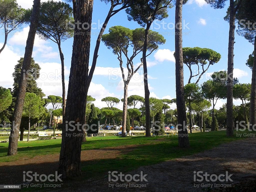 Typical Roman park stock photo