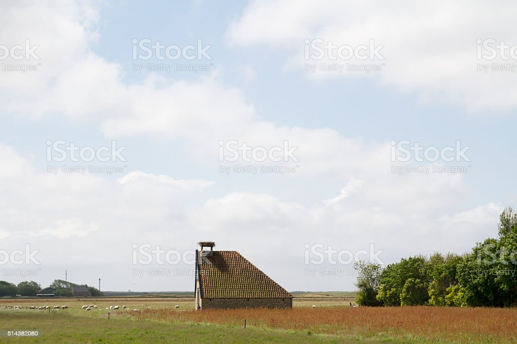 Typical sheep barn on the isle of Texel stock photo