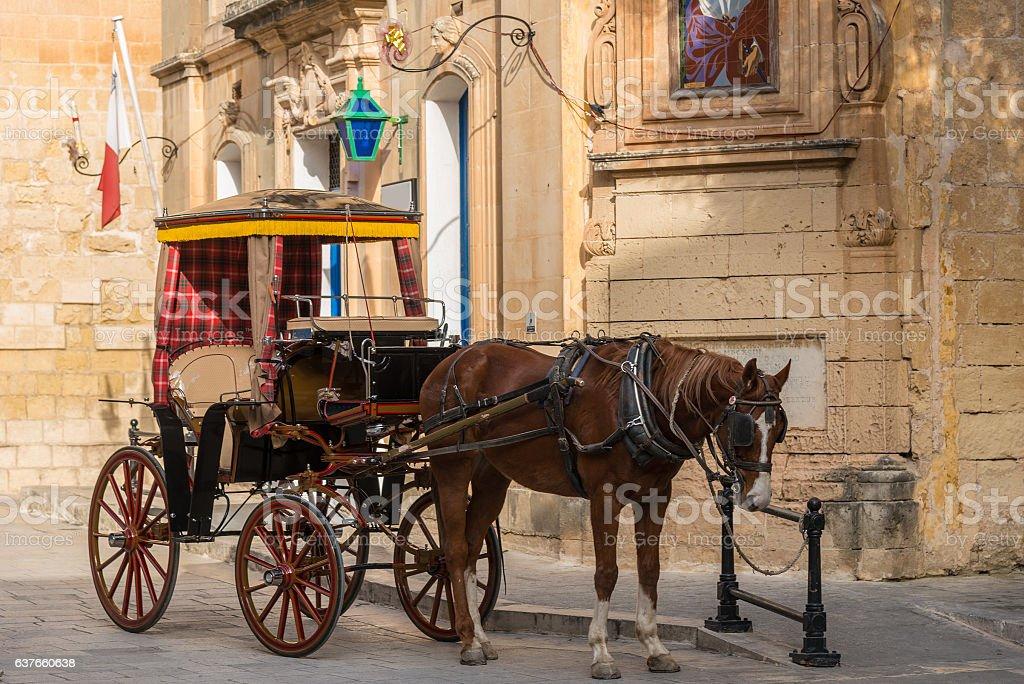 typical tourist horse carriage in Mdina - Malta, Europe stock photo