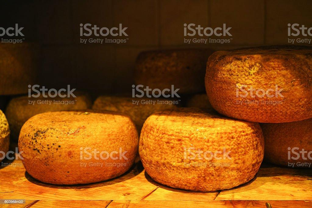 Typical tuscan pecorino cheese stock photo