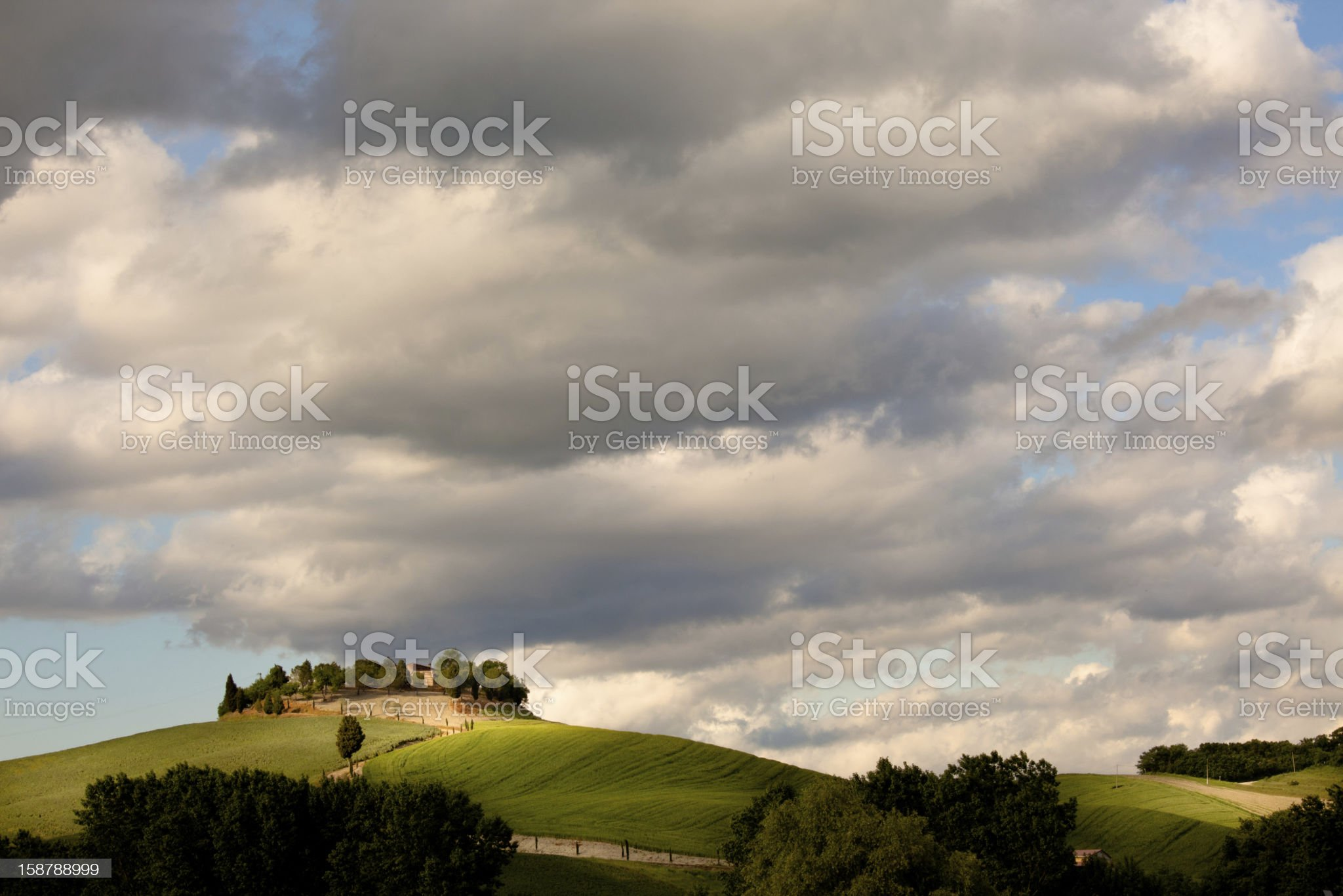 typical tuscany countryside royalty-free stock photo