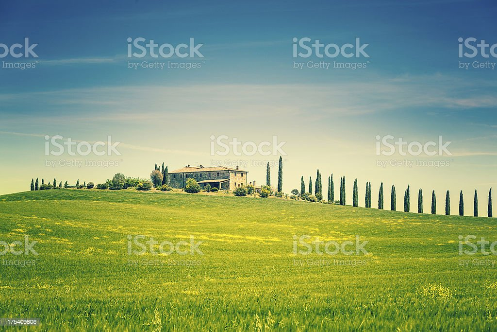 Typical Tuscany Farmhouse with Cypress Tree in Italy royalty-free stock photo
