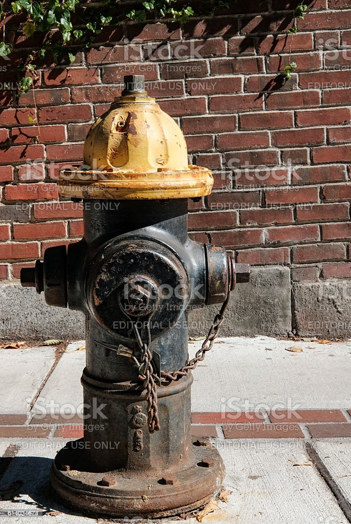 Typical US style fire hydrant seen in Boston, MA stock photo