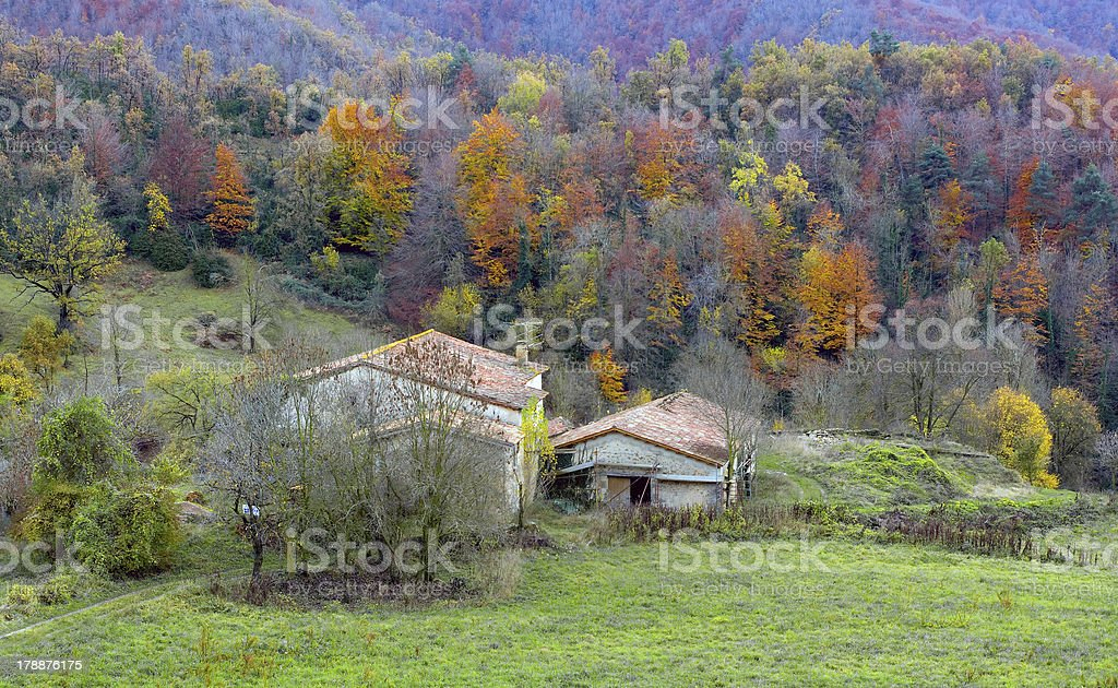 typical view of autumn stock photo