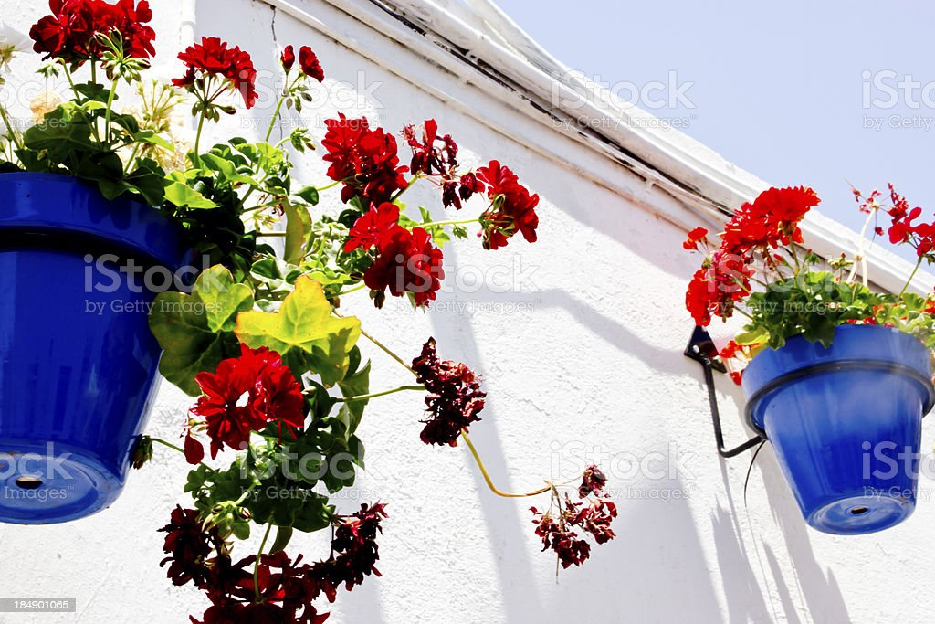 Typical wall planter pots in andalusian village stock photo