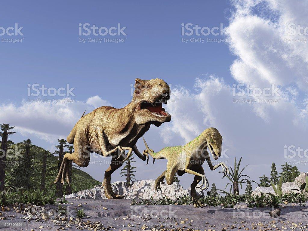 Tyrannosaurus rex chasing a velociraptor stock photo