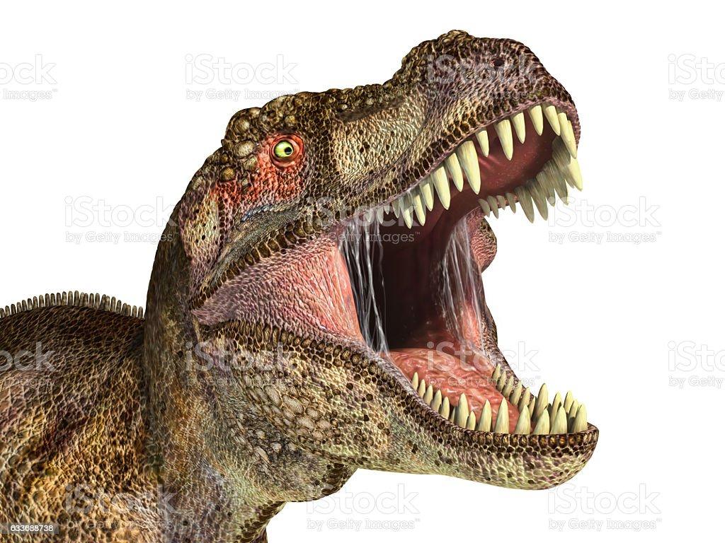 Tyrannosaurus Rex dinosaur, photorealistic representation. Head stock photo