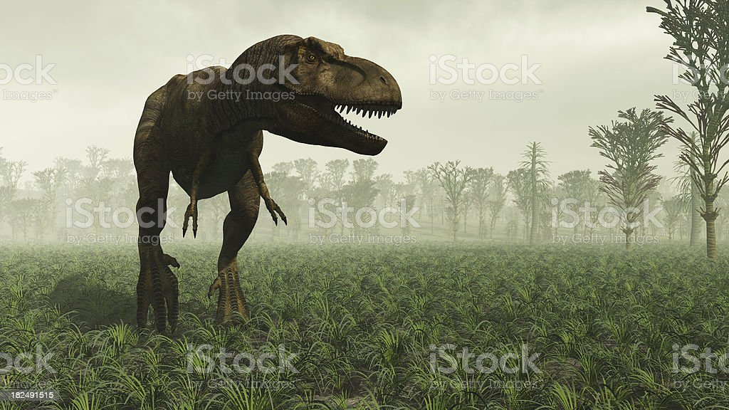 Tyrannosaurus rex royalty-free stock photo