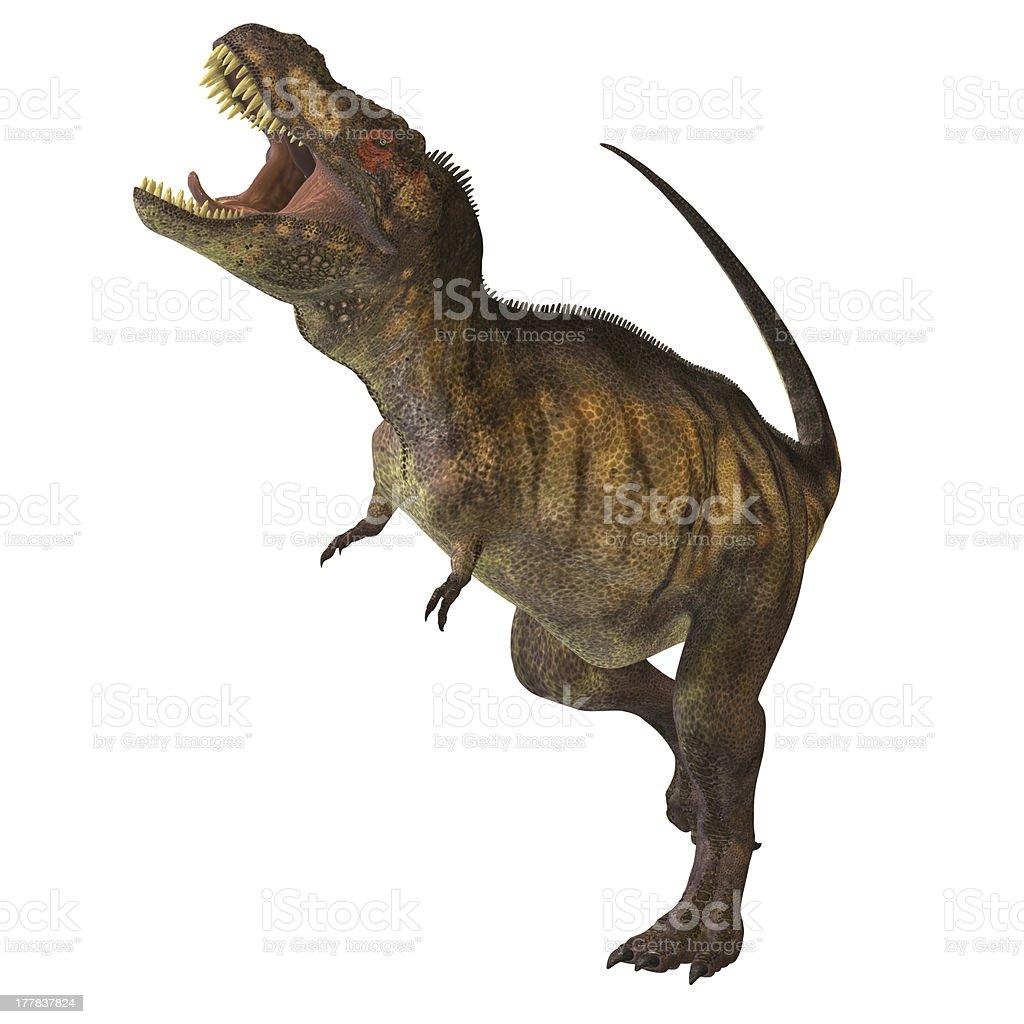 Tyrannosaurus Rex Profile stock photo