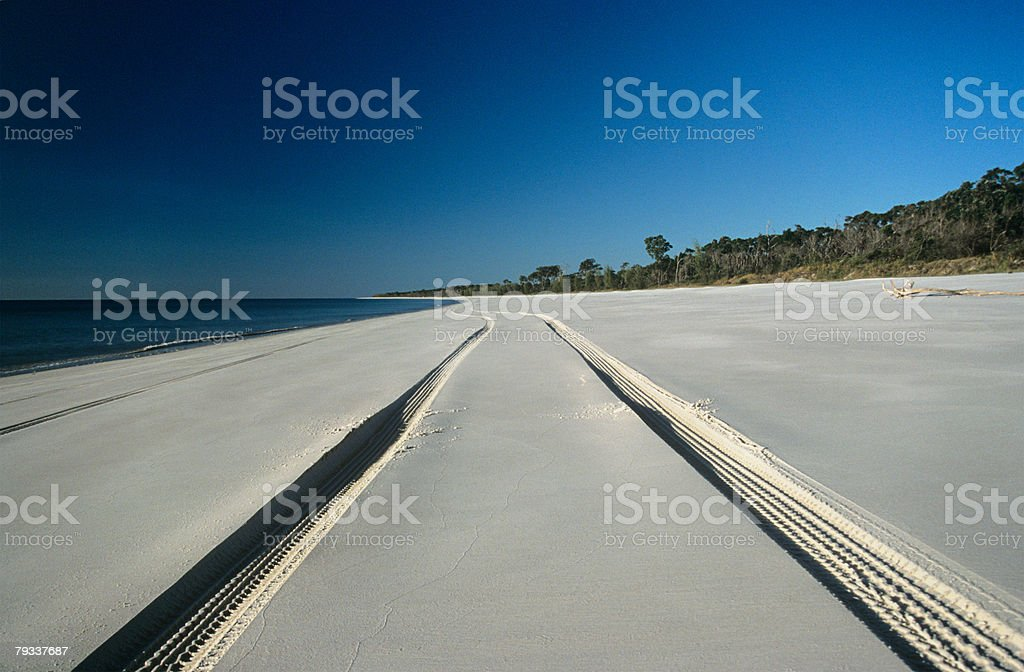 Tyre tracks on a beach royalty-free stock photo