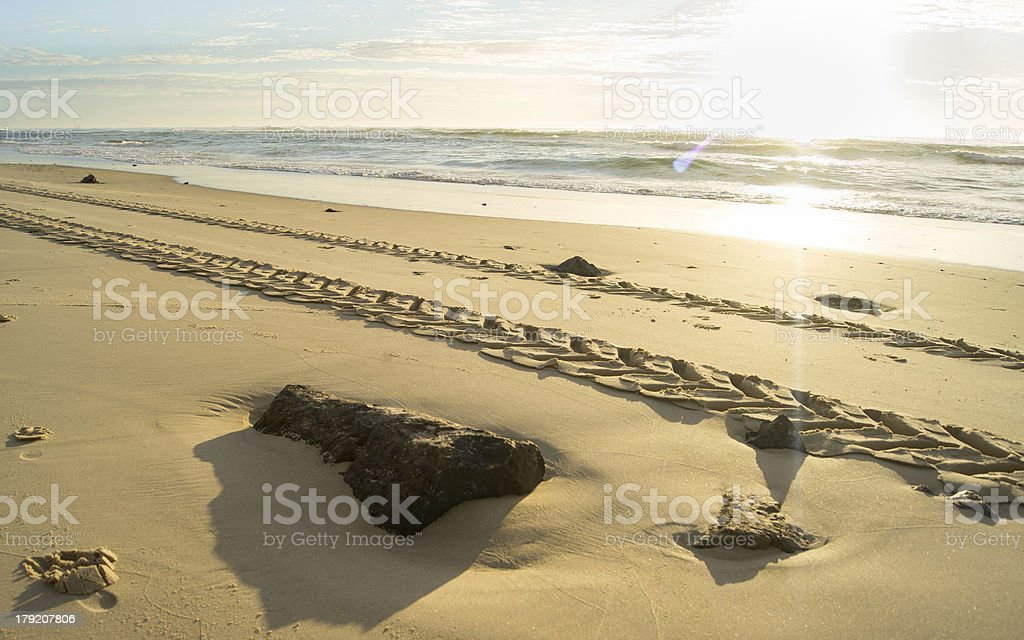 Tyre tracks on the beach with sun royalty-free stock photo