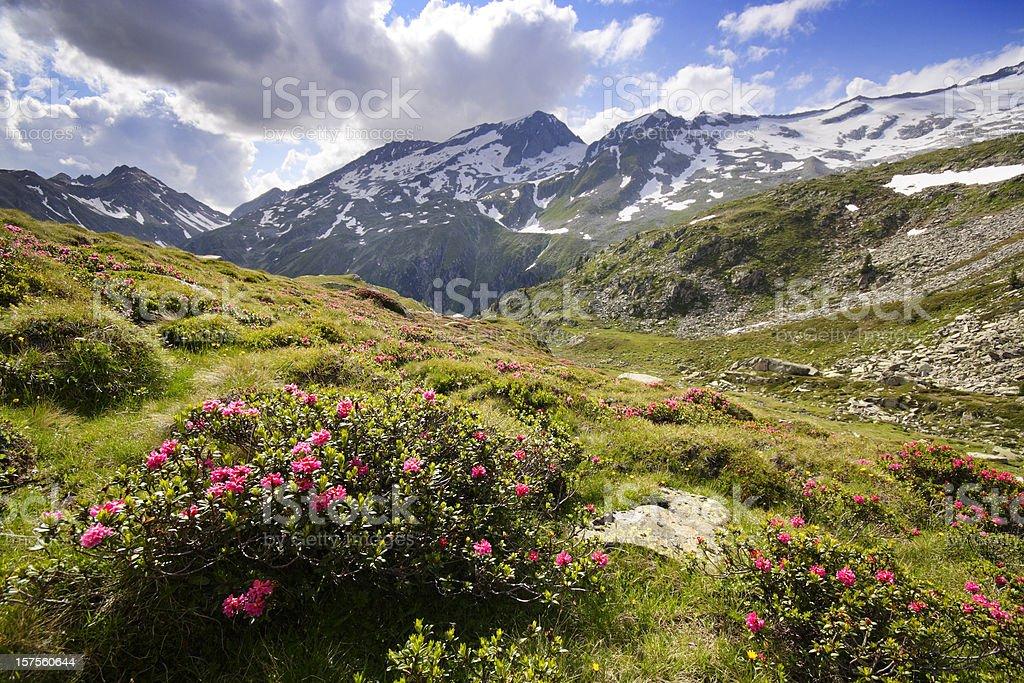 Tirol mountains royalty-free stock photo