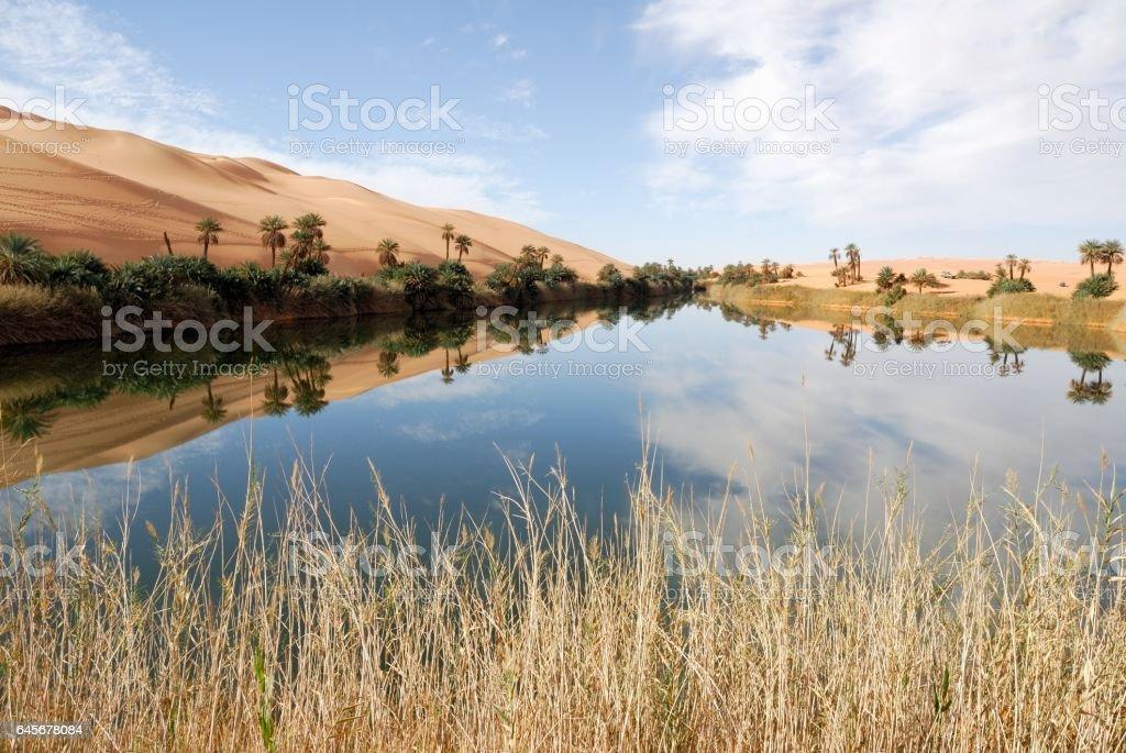 Ubari Oasis, Fezzan, Libya stock photo